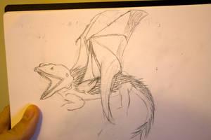 dragon by jasonshawcross