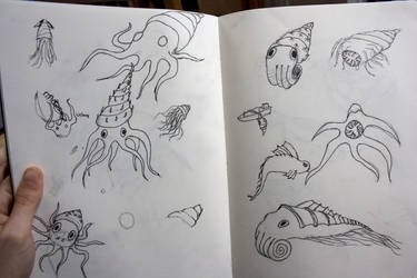 sea creatures by jasonshawcross