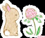 Clover Bunny (+ t-shirts!)