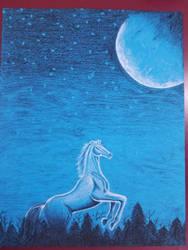 Mystic Nights