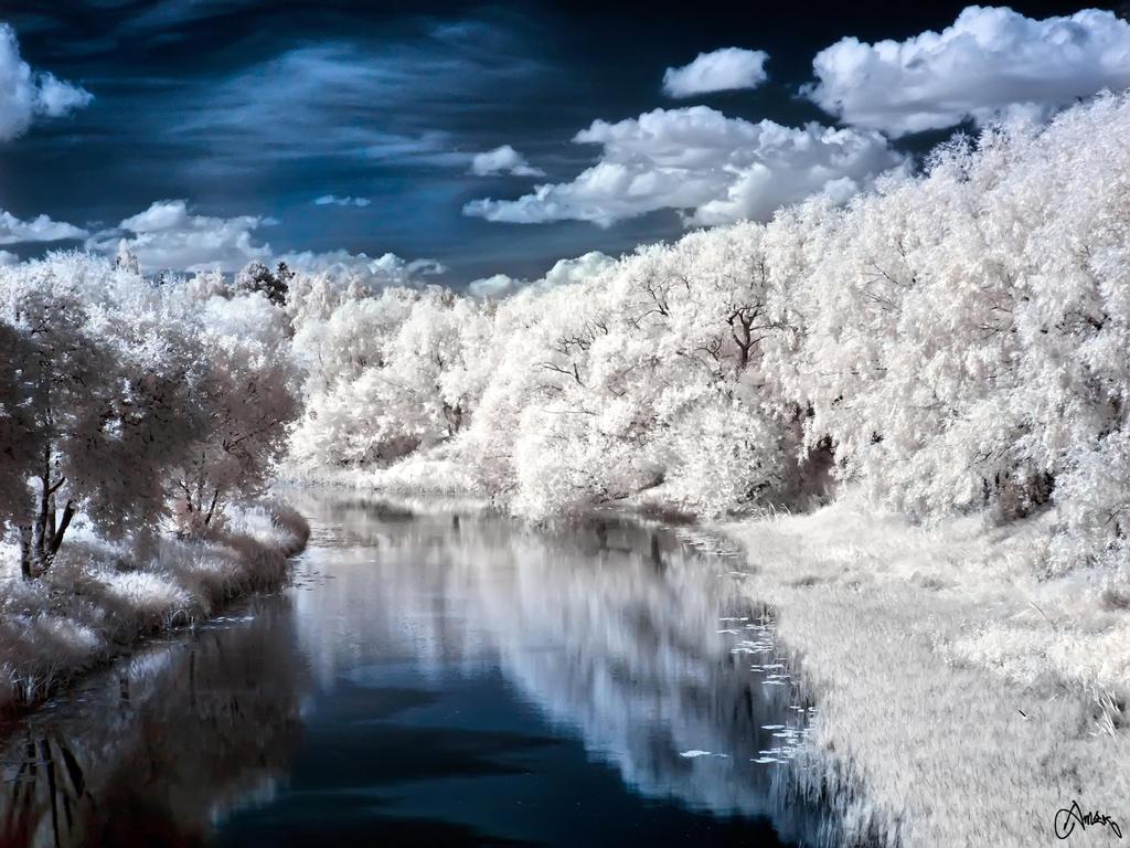 The River of Punkalaidun by Carnaga