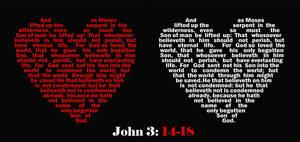 John 3:14-18