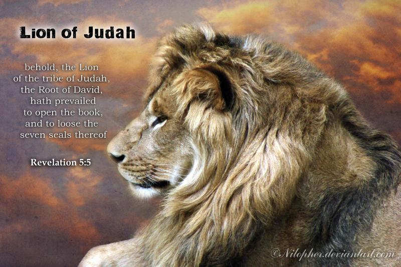 Lion of Judah by Nilopher on DeviantArt