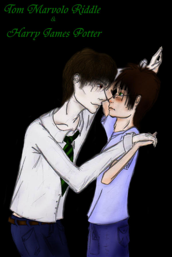 Tom Riddle and Harry Potter by Alkazi on DeviantArt