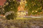 Geneve Snow 2010 II