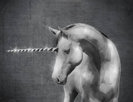 Junicorn 23