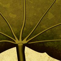 leaf detail by LazurURH