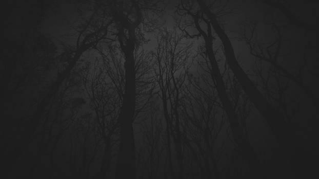 forest wallpaper 01