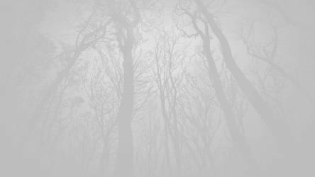 forest wallpaper 04