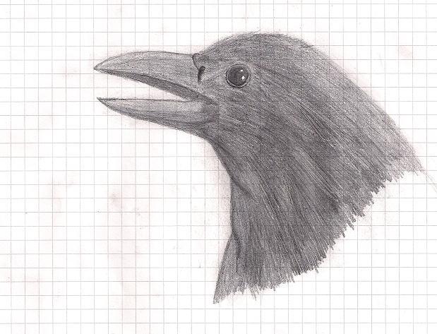 DasCairon's Profile Picture
