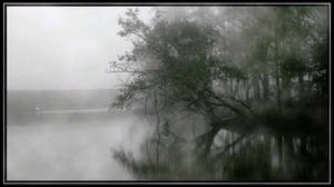 My Misty Bayou
