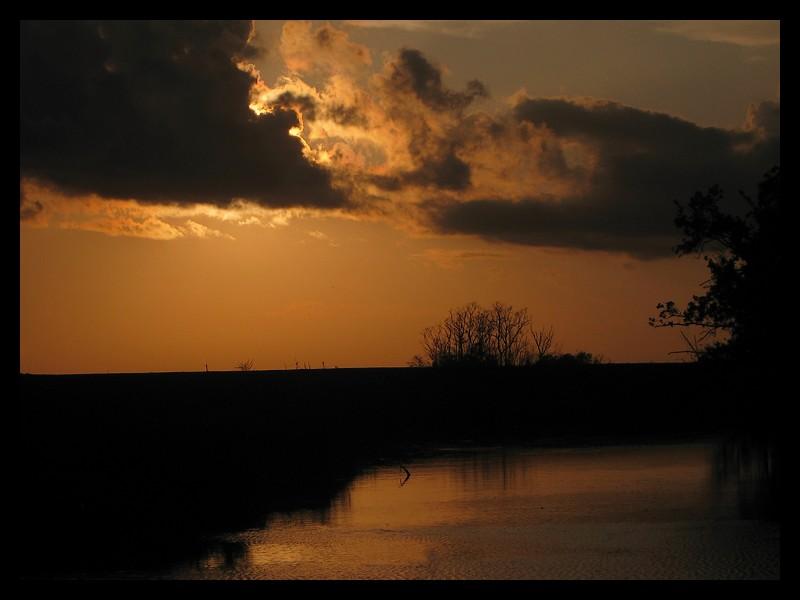 Samhain Night by SalemCat