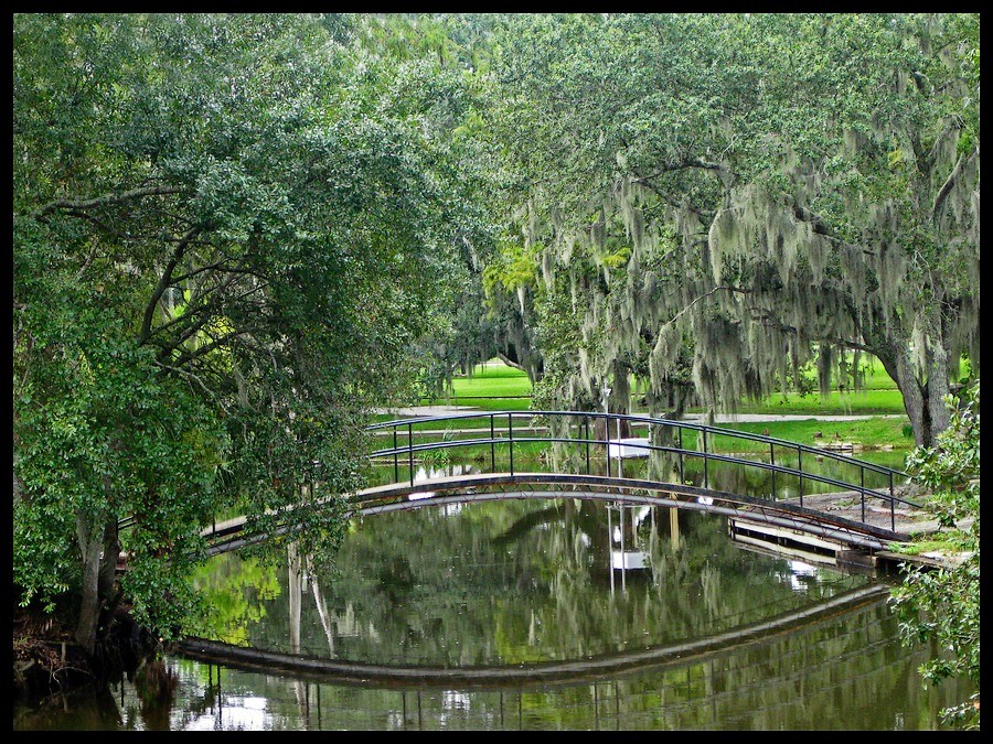 New orleans city park 1 by salemcat on deviantart for New orleans city park sculpture garden