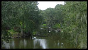 N.O. City Park Reflections by SalemCat
