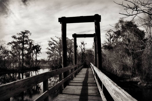 Across the Dismal Swamp