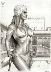 THE ARABIAN SPLENDOUR by jairolago
