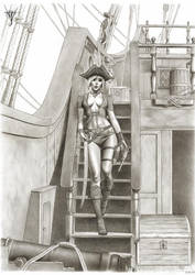 NECTARI, THE ADMIRAL OF THE PIRATES - commission