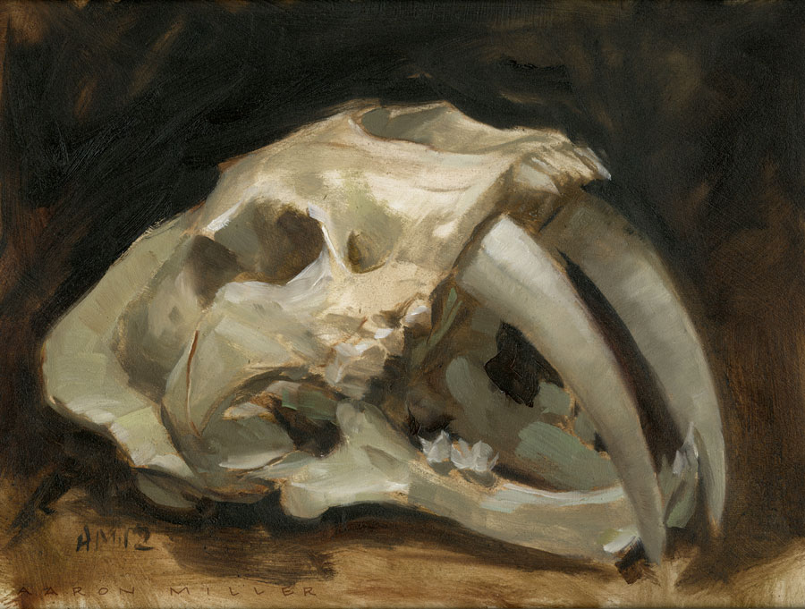 Saber Tooth Tiger Skull by AaronMiller