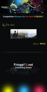 FringeFx Comp. Winners 11-28-11