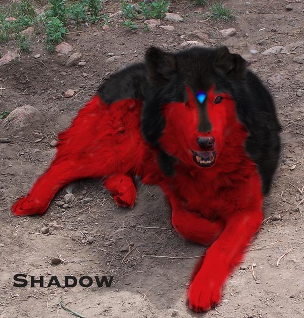 ShadoWolfDemon (Smiffi...