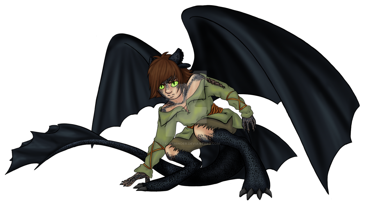 How To Train Your Dragon Hiccup And Toothless Fanfiction images