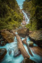 Surathali Falls by farcry77