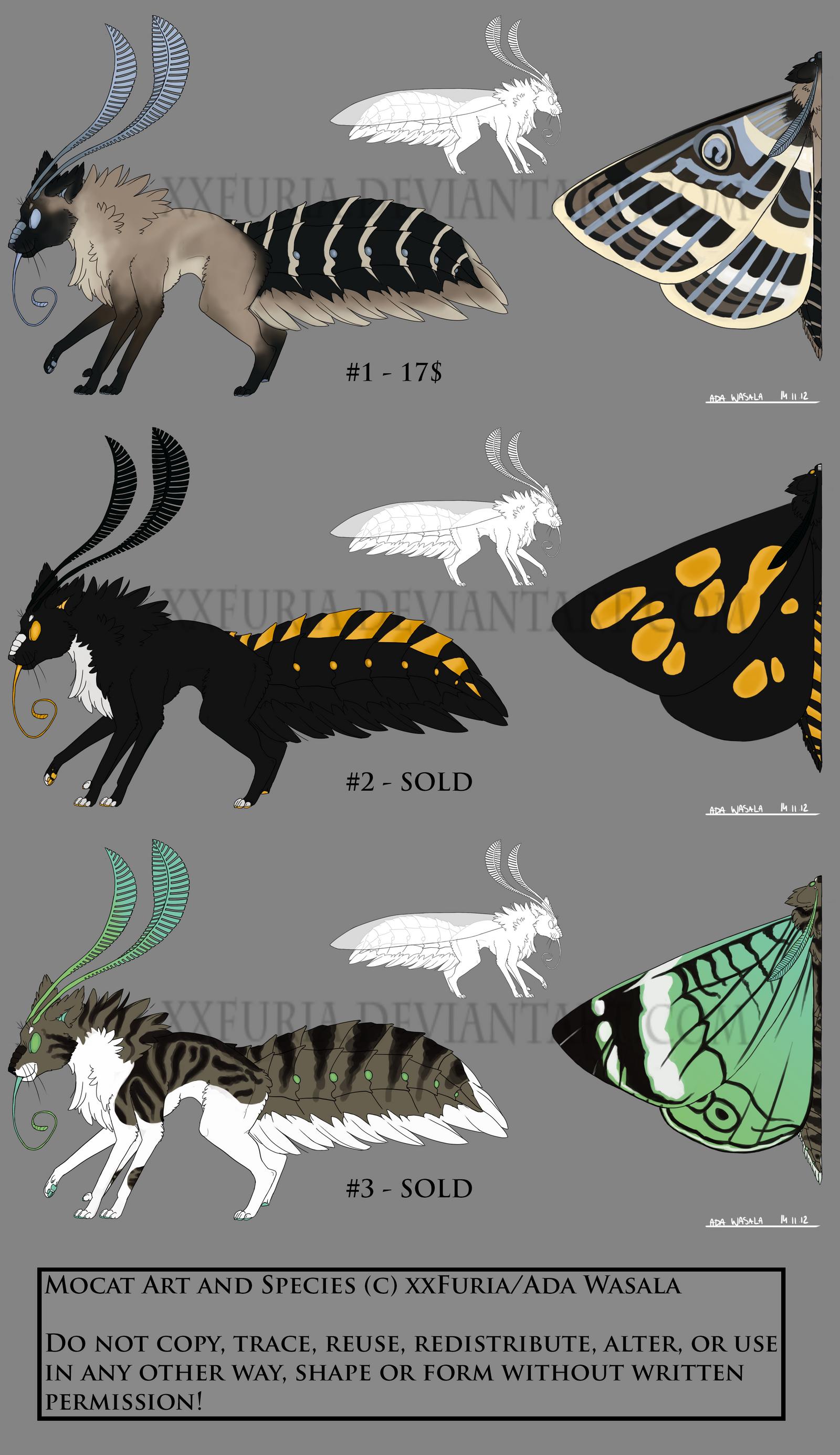 Felis Lepidoptera 1_1-3 [0/3] by xxFuria