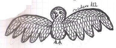 wierd_bird_xd_by_alexx122-d5xot0u.jpg