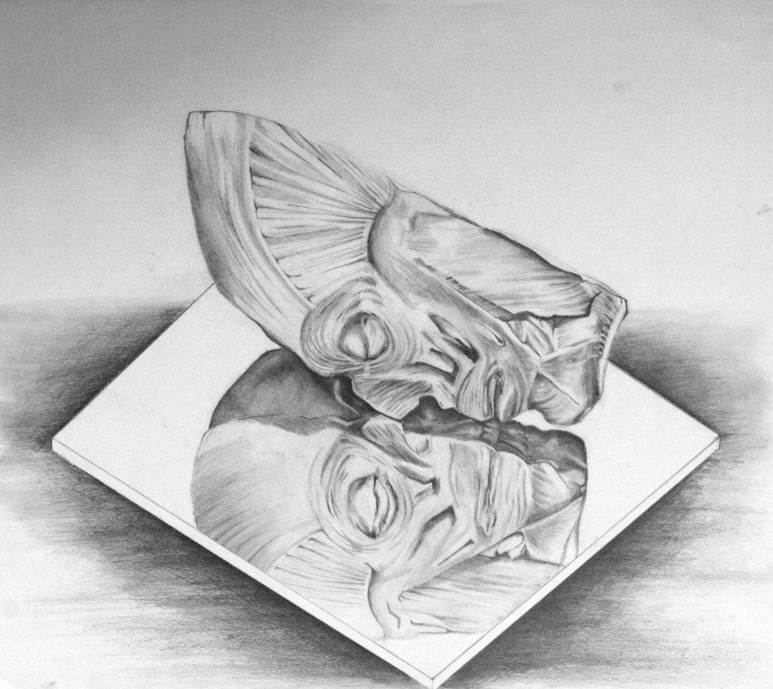 looking in mirror different reflection drawing. face reflection drawing by ethancsaszar looking in mirror different i