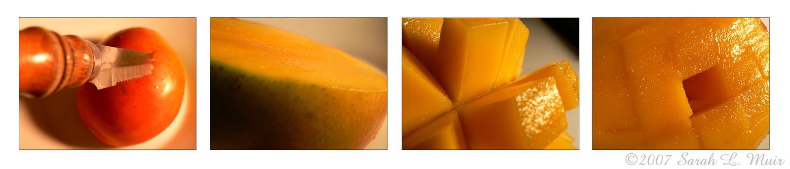 Mango by The-Shadowed-Angel