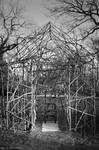 House of twigs by May-Machin