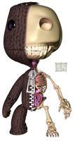 Sackboy Anatomy Half