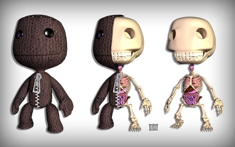 Sackboy Anatomy Wallpaper by freeny