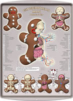 Gingerbread Man Dissected