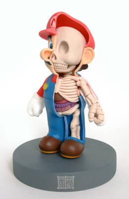 Mario Anatomy Sculpt Model