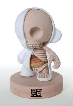 Munny Dissection