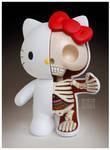 Hello Kitty Dissection 2.0
