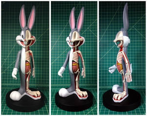 Bugs Bunny Dissection