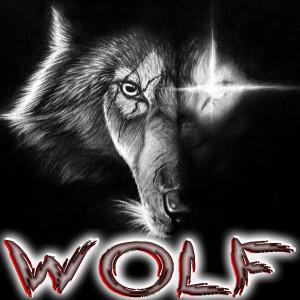 arteswolff's Profile Picture