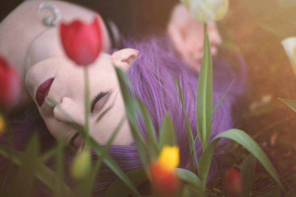 Tulip field by Cleo-Feline