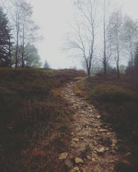 Rocky Trails by andoberry