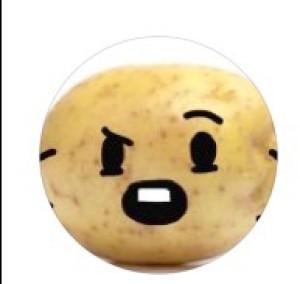 mayopotato855's Profile Picture