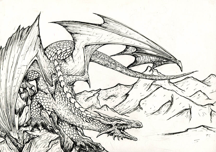 Dragon inks by TicChallis