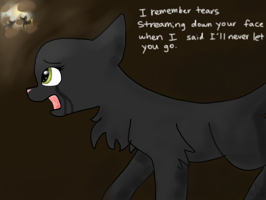 Warrior Cats Safe And Sound Hollyleaf By Pawrui