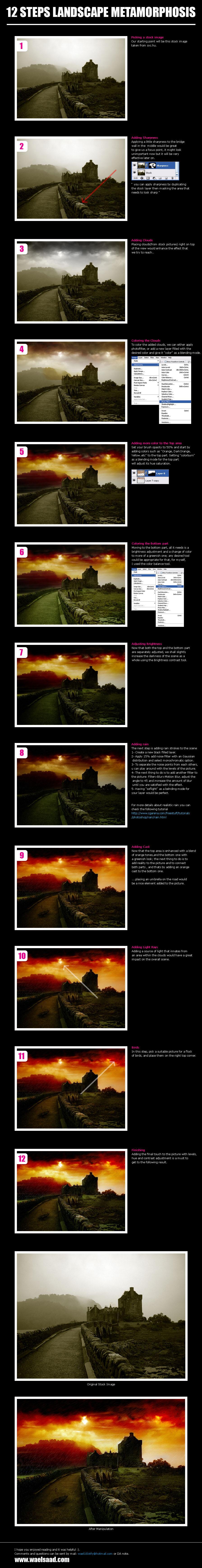 12 steps landscape metamorphos by dpainter