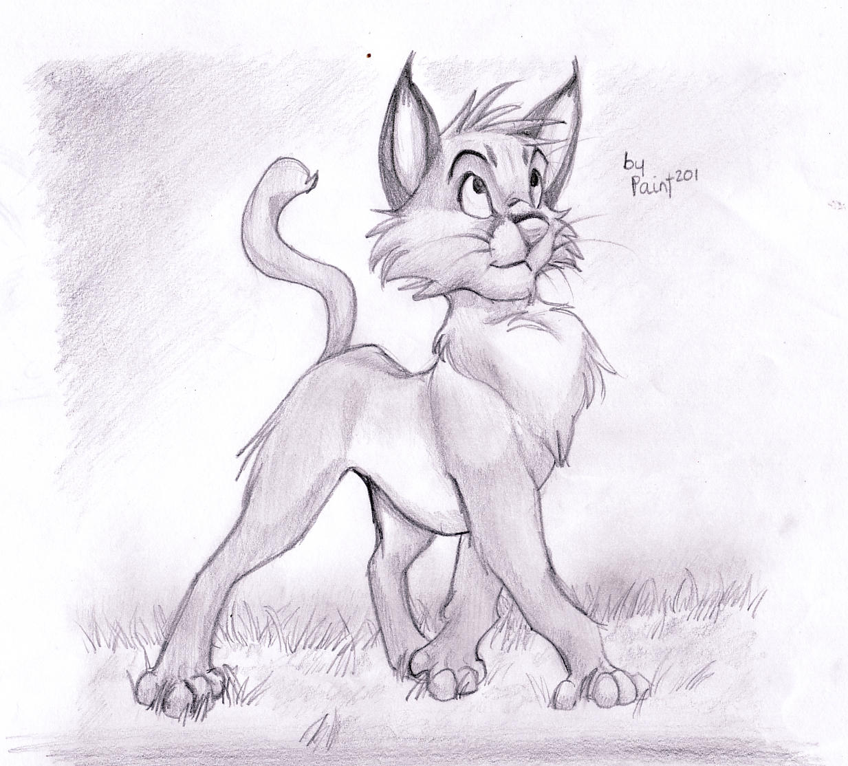 Caracal drawing - photo#26