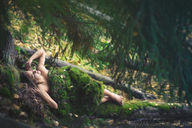 sleeping in the forest by goraakkaya