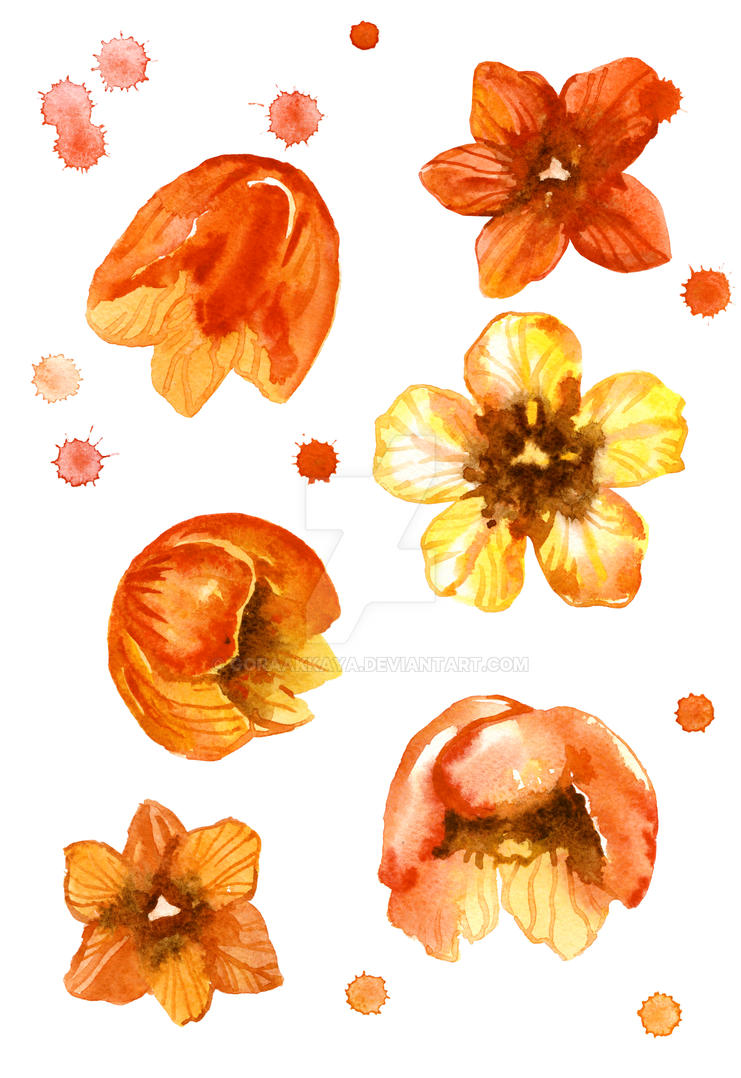 Watercolor isolated tulips and watercolor splashes by goraakkaya