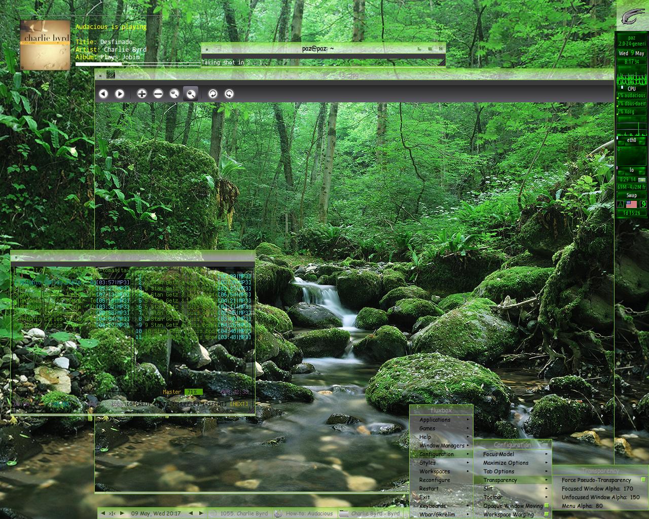 EverGreen Forest By Paz 1 On DeviantArt