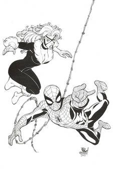 Spider-Man / Black Cat